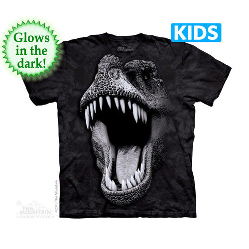 The Mountain Yth Tee S/S Big Face Glow Rex Yth.Lrg.