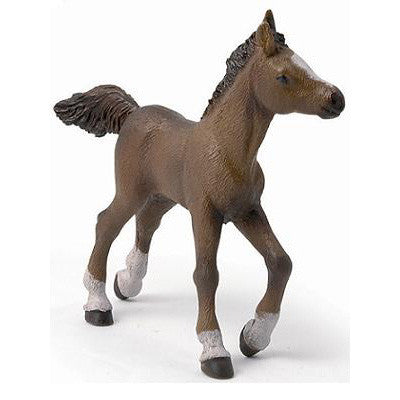 Papo Anglo-Arab Foal