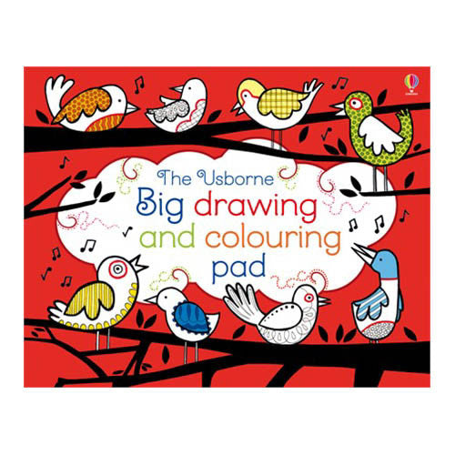 Usborne Big Drawing Coloring Pad
