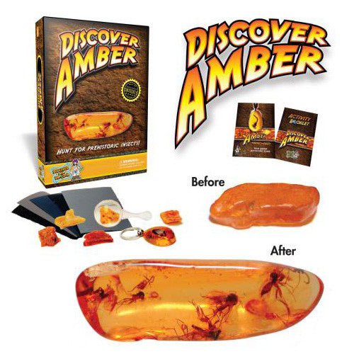 Dr. Cool Discover Amber Kit