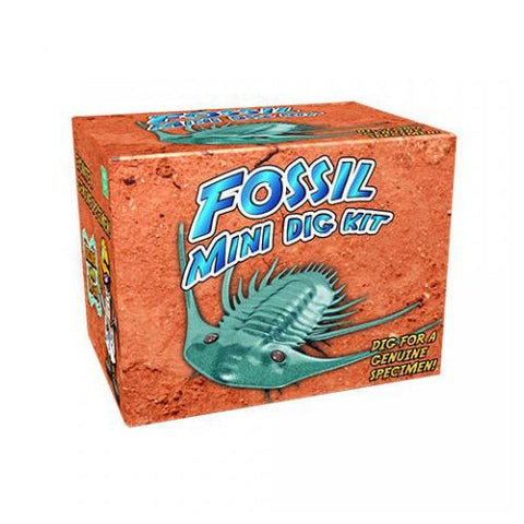 Dr. Cool Fossil Mini Dig Kit