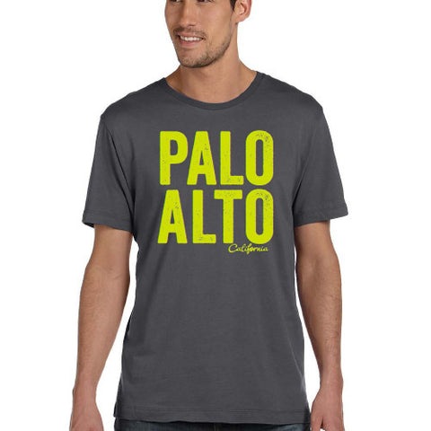 PASS Tee BIG PALO ALTO Asphalt Small