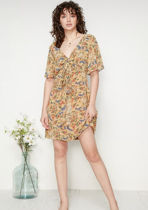 Ditsy Floral Tie Front Dress