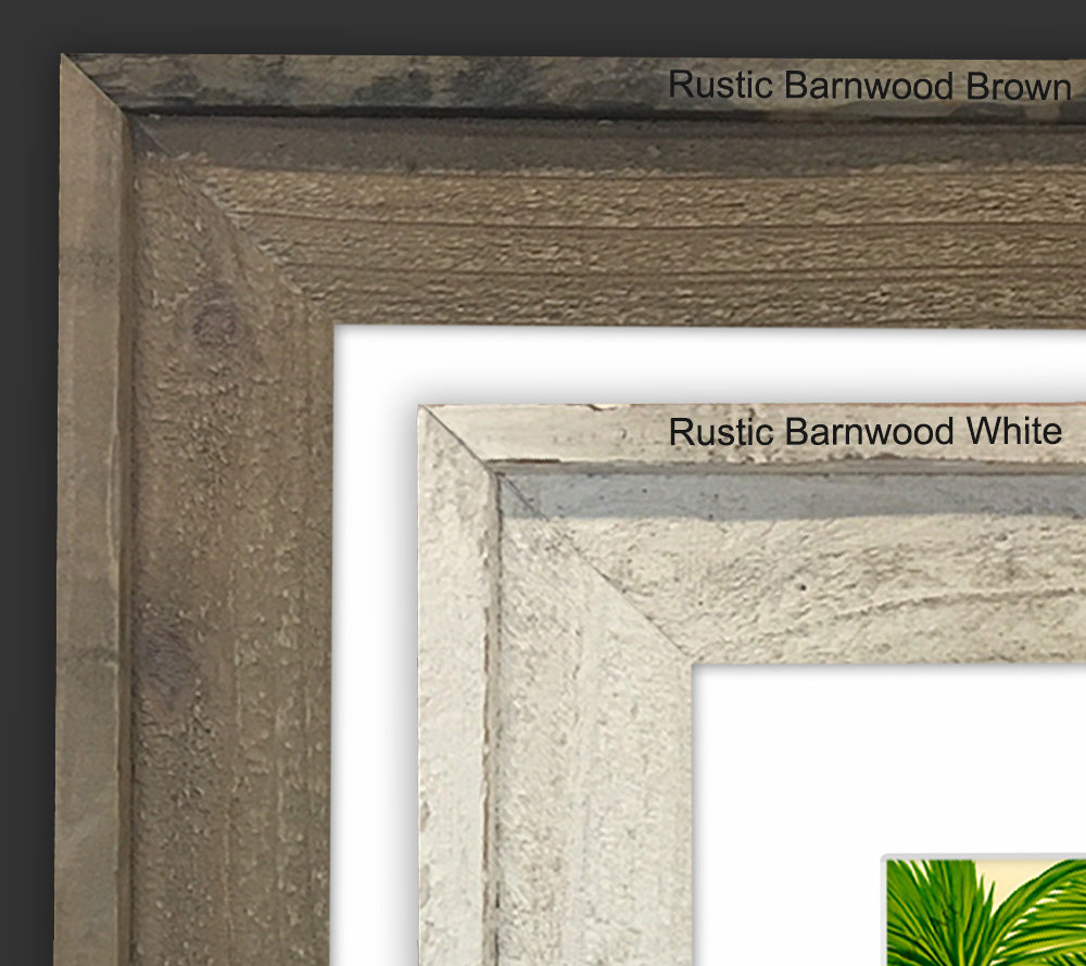 Rustic Barnwood - Reclaimed Wood Frames (Mat Prints) | Tropical ...