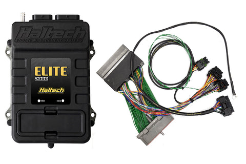 Elite 2000 + Ford Mustang GT & Cobra (1999-2004) Plug 'n' Play Adaptor Harness Kit