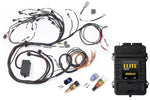 Elite 2500 + Terminated Harness Kit for Nissan RB Engines (no ignition sub-harness)