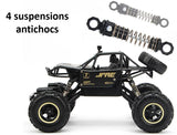 suspensions antichocs du Monster Truck télécommandé
