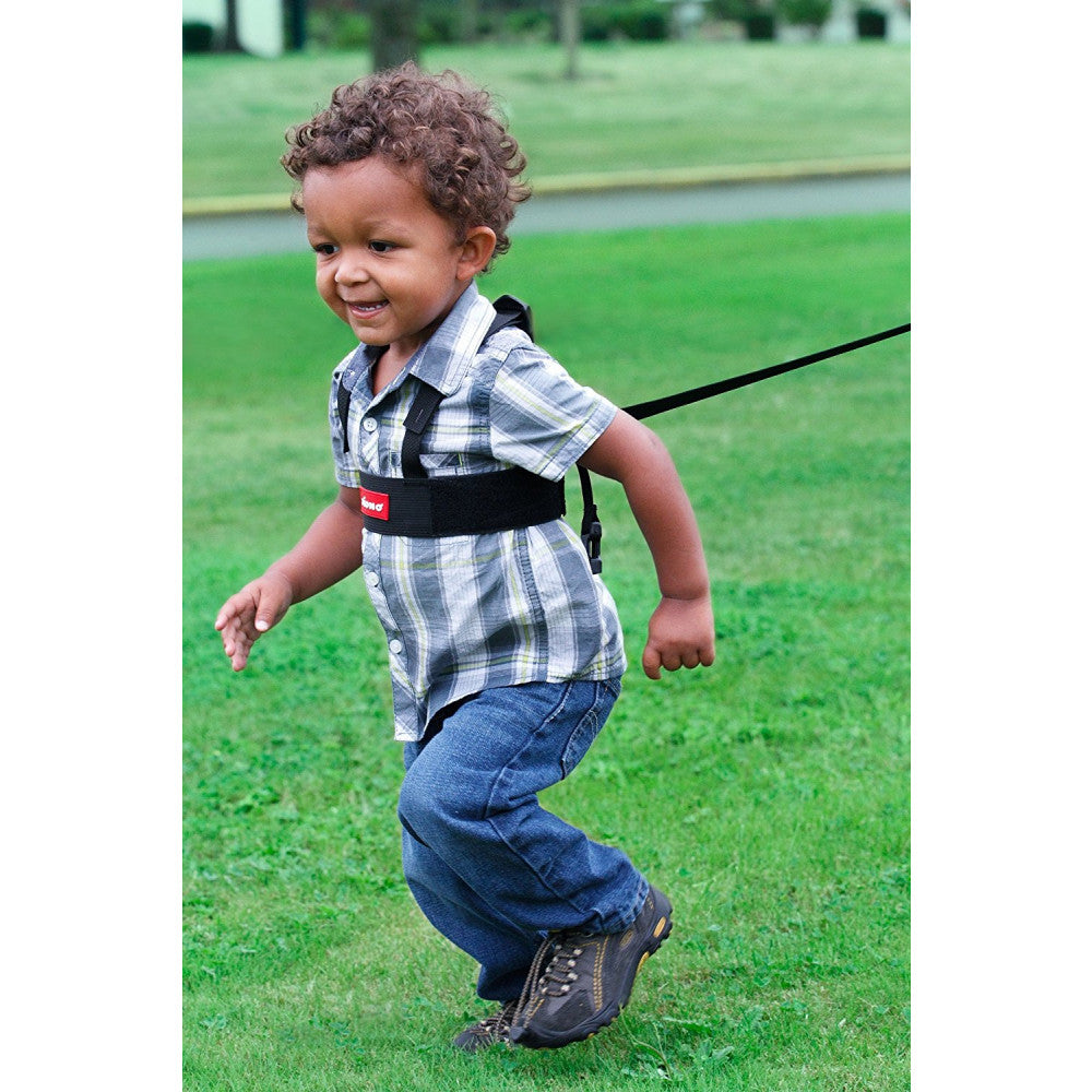 Diono - Sure Steps Toddler Body Or Wrist Harness