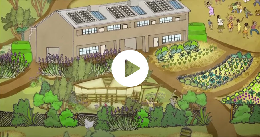 Food for thought - schools permaculture