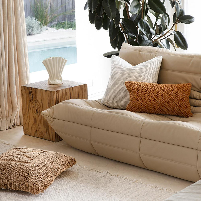 leather couch with throw cushions and indoor plant