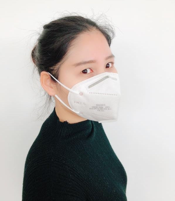 N95 Disposable Face Masks - 10 Pack