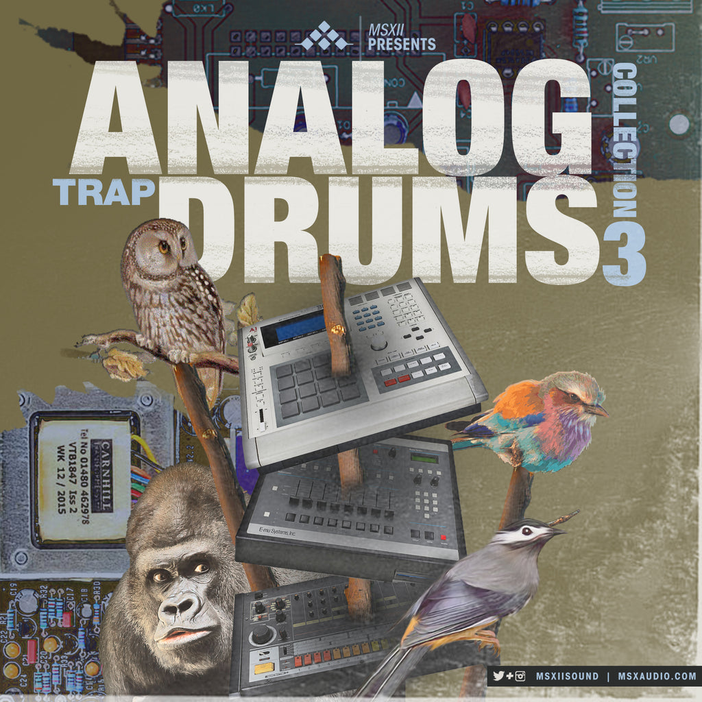 Analog Trap Drums Collection 3