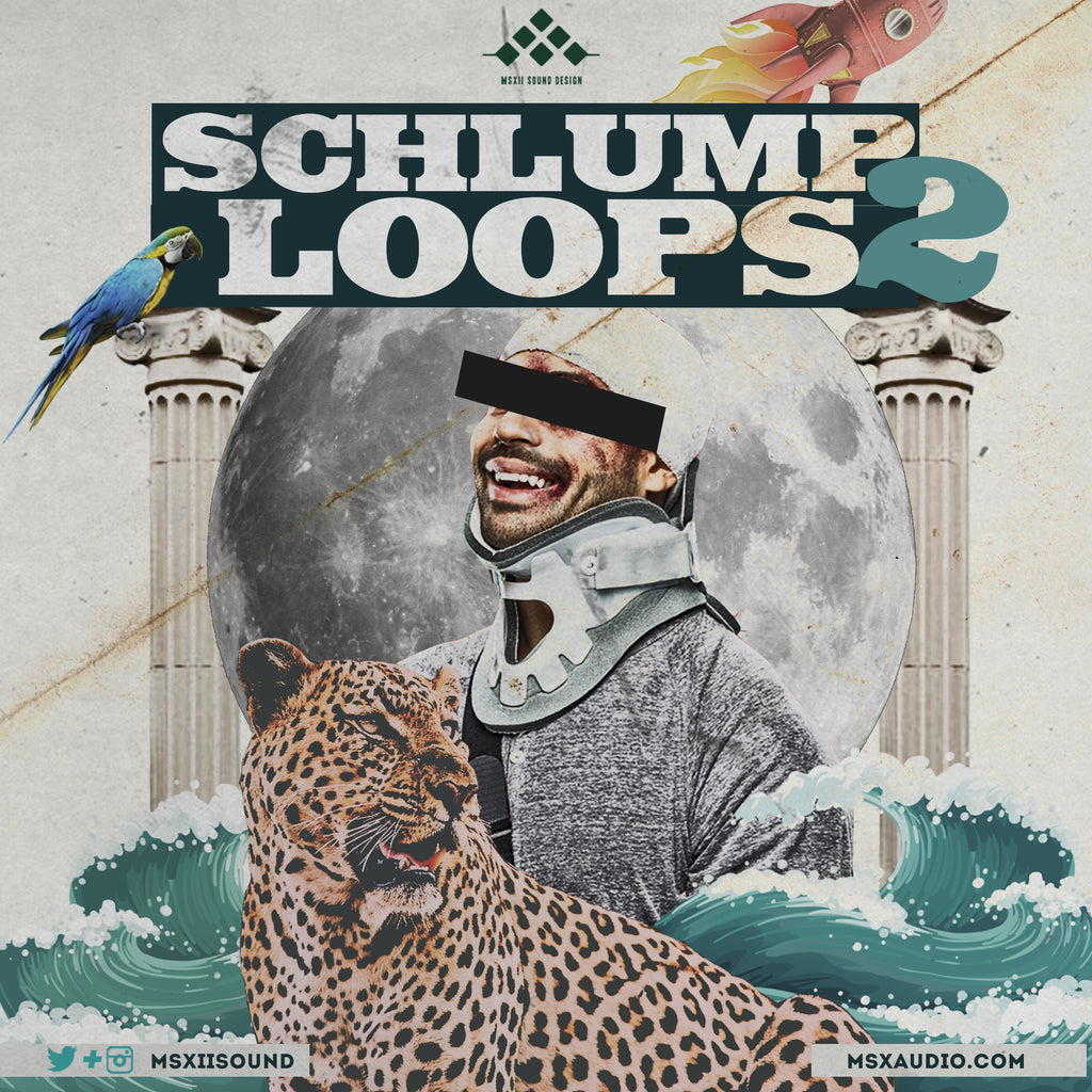 Schlump Loops 2