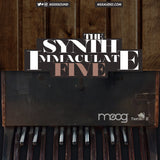 The Synth Immaculate 5