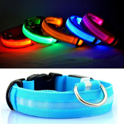IHRneer Button Battery Luminescent Dog Collar (5 colors & 5 sizes)