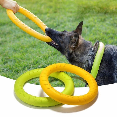 IHRneer Dog EVA Flying Discs Pet Training Ring Interactive Training Dog Toy (3 colors & 2 sizes)