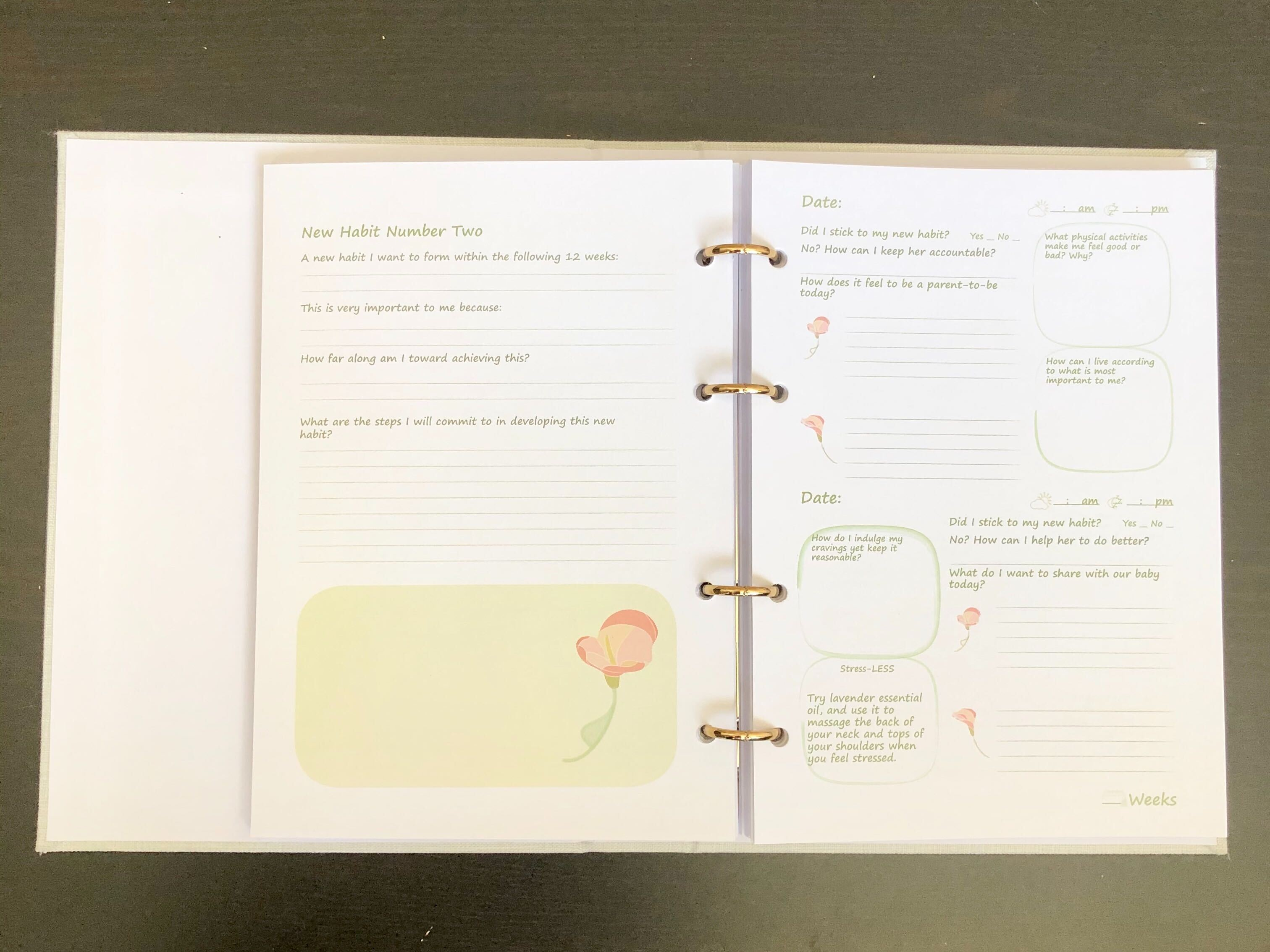 Our pregnancy - a mindful journal for couples habit curator and daily spread page