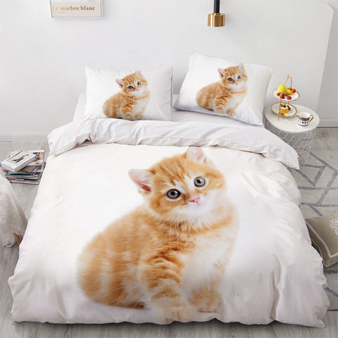 Ensemble Drap Chat