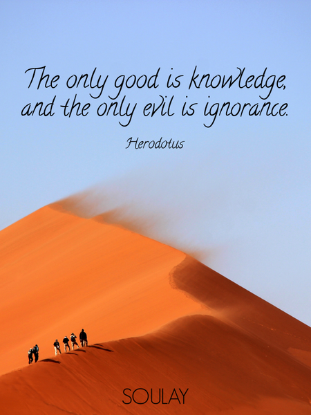The only good is knowledge, and the only evil is ignorance. (Poster)