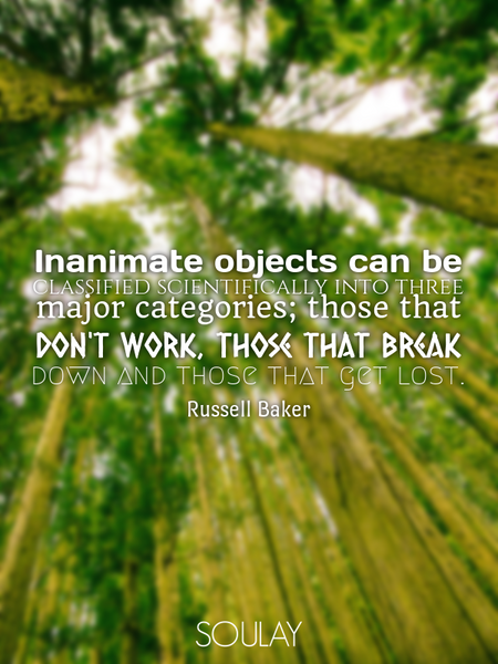 Inanimate objects can be classified scientifically into three major categories; those that don't ... (Poster)