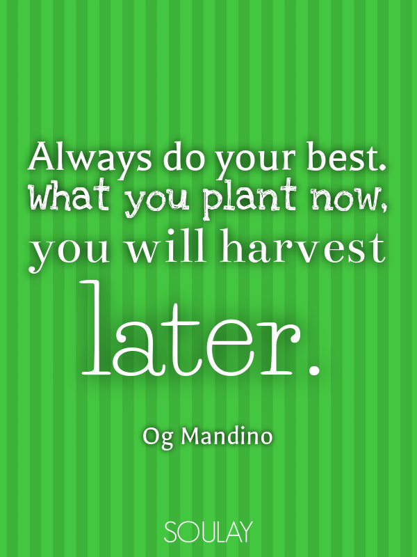 Always do your best. What you plant now, you will harvest later. - Quote Poster