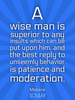 A wise man is superior to any insults which can be put upon him, an... - Quote Poster