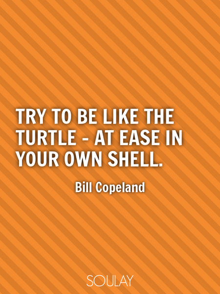 Try to be like the turtle - at ease in your own shell. (Poster)