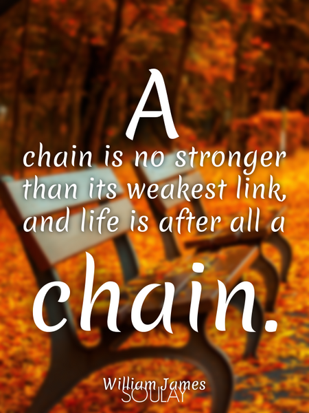 A chain is no stronger than its weakest link, and life is after all a chain. (Poster)