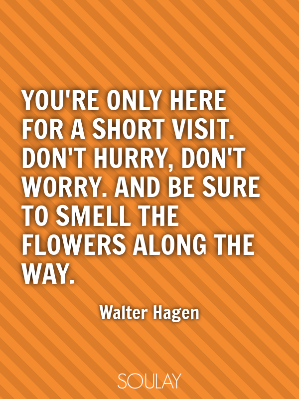 You're only here for a short visit. Don't hurry, don't worry. And b... - Quote Poster