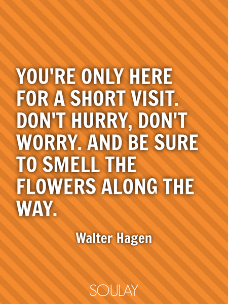 You're only here for a short visit. Don't hurry, don't worry. And be sure to smell the flowers al... (Poster)