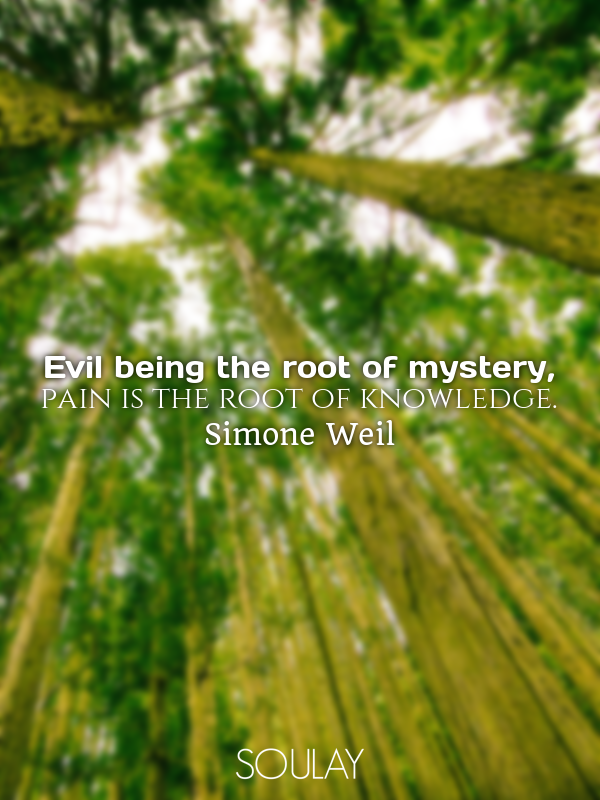 Evil being the root of mystery, pain is the root of knowledge. - Quote Poster