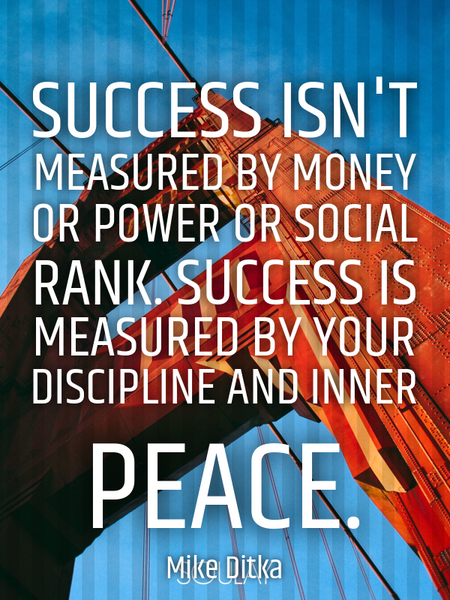Success isn't measured by money or power or social rank. Success is measured by your discipline a... (Poster)