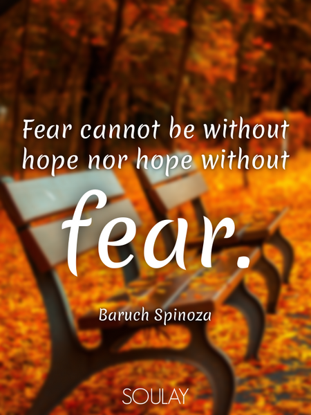 Fear cannot be without hope nor hope without fear. (Poster)