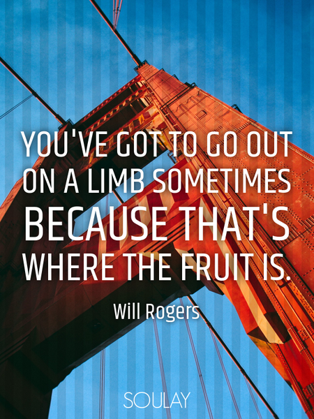 You've got to go out on a limb sometimes because that's where the fruit is. (Poster)