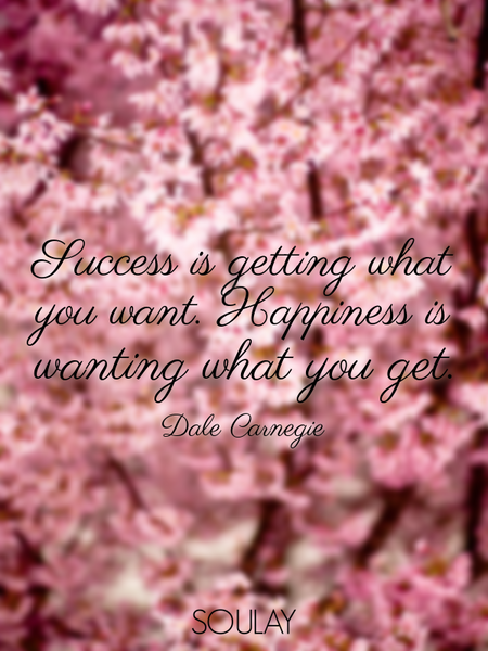 Success is getting what you want. Happiness is wanting what you get. (Poster)