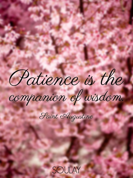Patience is the companion of wisdom. (Poster)