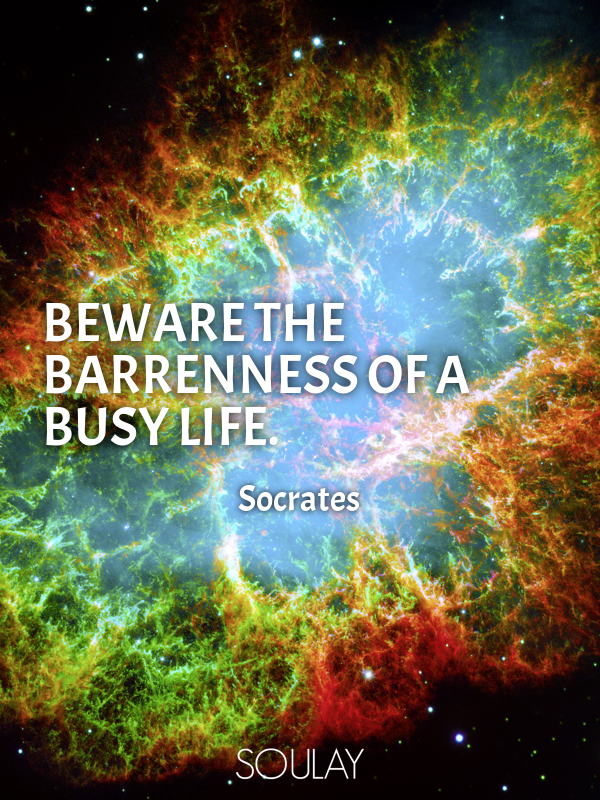 Beware the barrenness of a busy life. - Quote Poster
