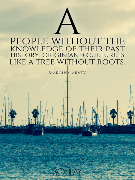 A people without the knowledge of their past history, origin and culture is like a tree without r... (Poster)