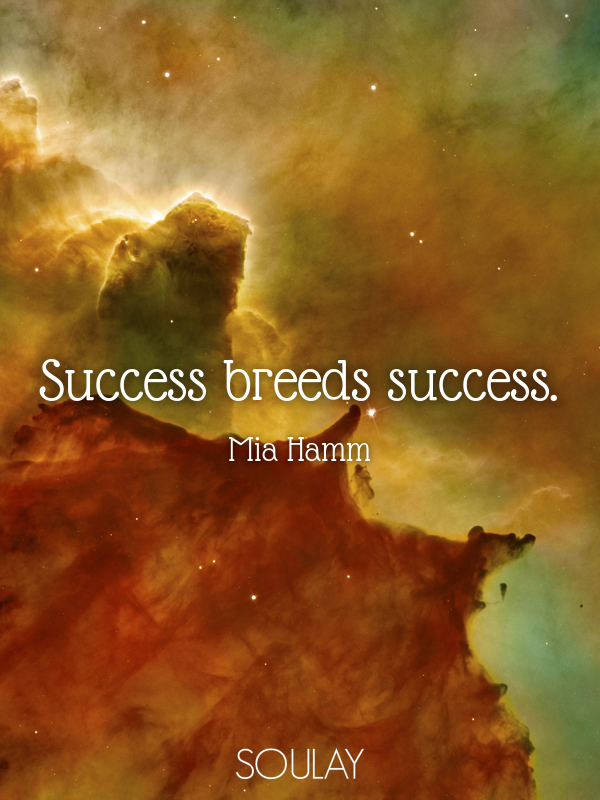 Success breeds success. - Quote Poster