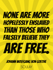 None are more hopelessly enslaved than those who falsely believe th... - Quote Poster