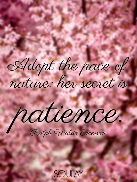 Adopt the pace of nature: her secret is patience. (Poster)