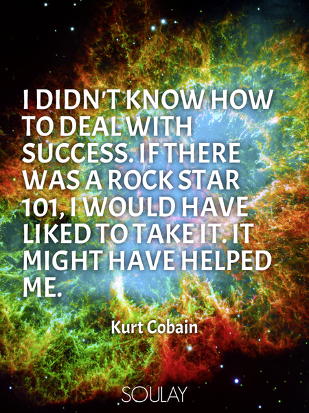I didn't know how to deal with success. If there was a Rock Star 101, I would have liked to take ... (Poster)