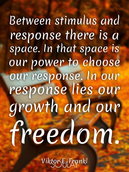 Between stimulus and response there is a space. In that space is our power to choose our response... (Poster)