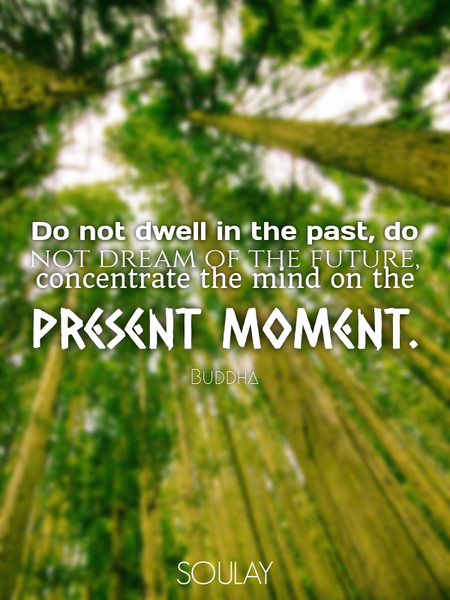 Do not dwell in the past, do not dream of the future, concentrate the mind on the present moment. (Poster)