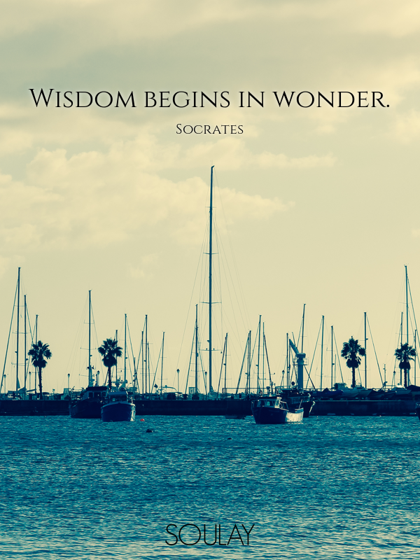 Wisdom begins in wonder. - Quote Poster