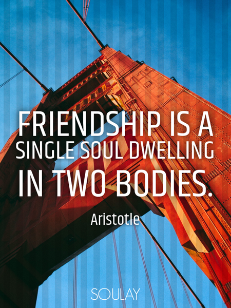 Friendship is a single soul dwelling in two bodies. (Poster)