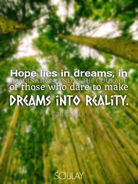 Hope lies in dreams, in imagination, and in the courage of those who dare to make dreams into rea... (Poster)