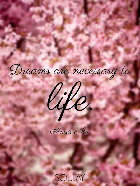 Dreams are necessary to life. (Poster)