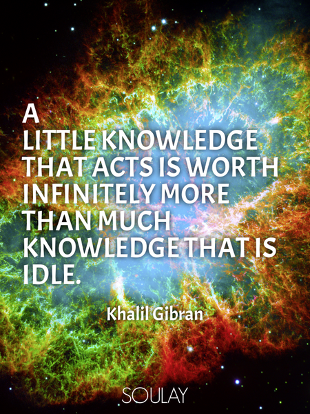 A little knowledge that acts is worth infinitely more than much knowledge that is idle. (Poster)