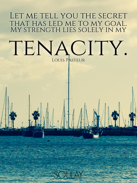 Let me tell you the secret that has led me to my goal. My strength lies solely in my tenacity. (Poster)